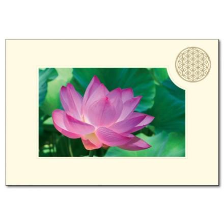 Carte Pliante Fleur De Vie Fleur De Lotus 11 5x16 7cm Avec